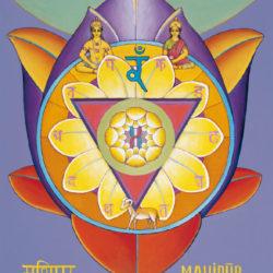 Chakra Serileri III / Solar Pleksus Chakra: Kişisel Gücünü Eline Almak