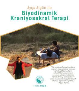 Biyodinamik Kraniyosakral Terapi