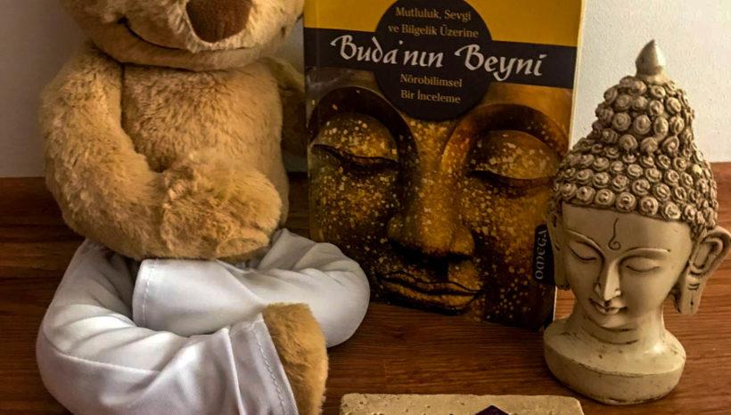 Tara Yoga Kütüphane Serileri – Haftanın Önerisi: Buda'nın Beyni